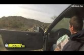 BMW M3 amikor pancser vezeti