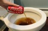 5 Őrült tény a Coca-Cola-ról