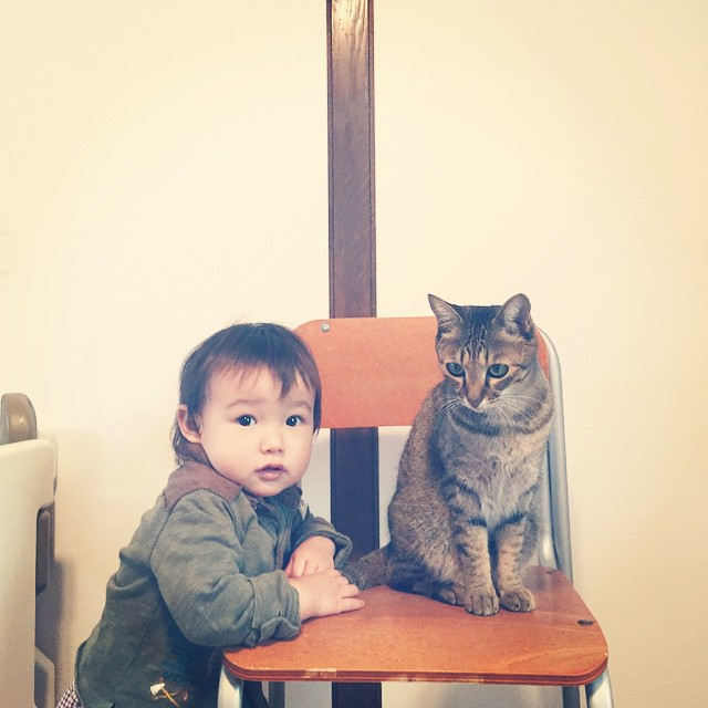 CatBabyBrother7