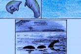 A Loch Ness-i szörny rejtélye